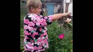 Газонная трава между грядками у Татьяны Ермаковой(, 2016-07-27T06:31:19.000Z)