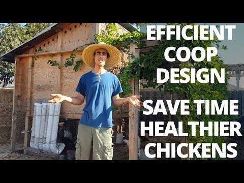 How To Design A Chicken Coop: Automatic Food And Water, Easy To Clean