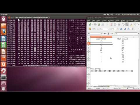 Ubuntu 12.04 Forensics - ASCII to Hexadecimal Conversion