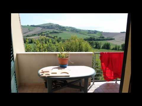 Appartamento giardino 800 mq in Vendita a Polverigi (AN)