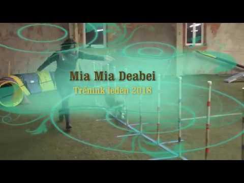 Mia Mia Deabei - agility trénink leden 2018