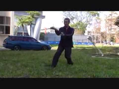 Kung Fu Eagle Style Golden Eagle Style Kun...