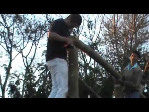 Estufa de Bambu Agropolen
