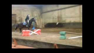 Cours de saut d'obstacle