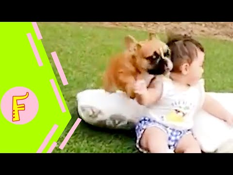 Funny Baby and Dog Make Your Head Hurt 🤣 | Cute Baby Funny Moments