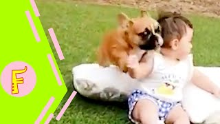 Funny Baby and Dog Make Your Head Hurt  | Cute Baby Funny Moments