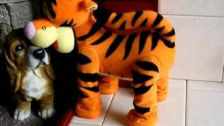 Tigger - Lets Bounce