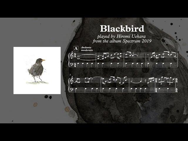 Blackbird - Hiromi Uehara ( Piano Transcription )