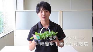 説明 カネコ種苗の野菜を使った簡単栽培を提案! ゆうたろう君が実際に...