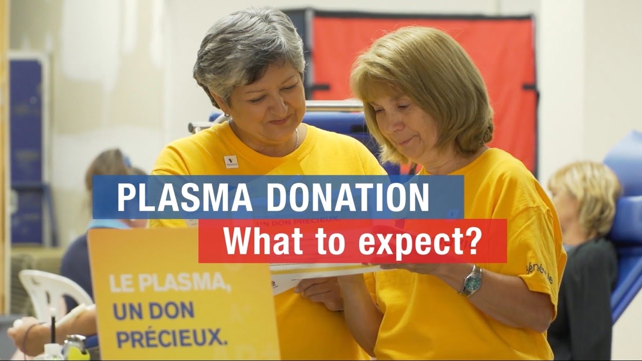 Plasma donation: what to expect?