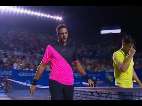 Del Potro avanzó a las semifinales en el ATP de Acapulco