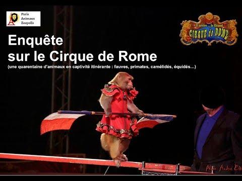 Enquête sur le cirque de Rome
