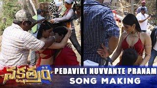 Telugutimes.net Pedaviki Nuvvante Pranam Song Making