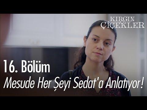 Mesude Her şeyi Sedat'a Anlatıyor! - Kırgın Çiçekler 16. Bölüm