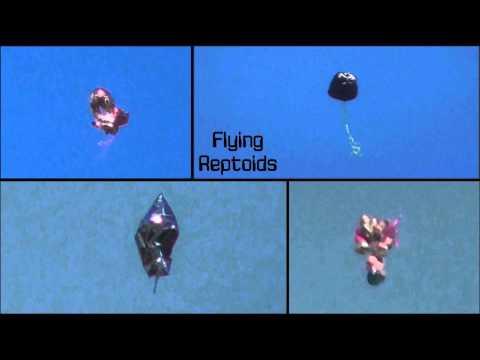 Flying Reptoids