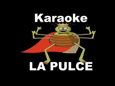 Karaoke - LA PULCE - CANZONI PER BAMBINI-SERGIO ENDRIGOCON TESTO