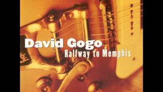Watch David Gogo Louisiana Blues video