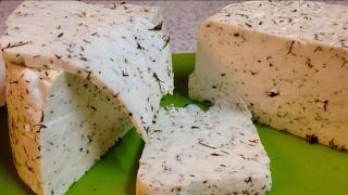 Домашняя Брынза с укропом. Сыр домашний из коровьего молока.