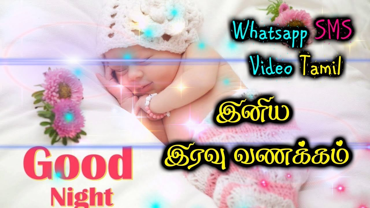 Good Night Wishes In Tamil Whatsapp Video Kutty Kavithai Kutty Video