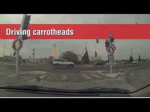 driving carrot Heads, Chapter 00
