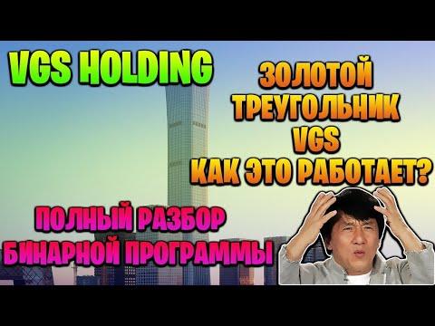 #VGSHOLDING  Проект VGS HOLDING – бинар и золотой треугольник
