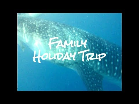 CEBU FAMILY HOLIDAY TRIP: Canyoneering, Whale Shark Watching, Pescador Island Hopping