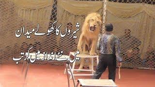 shero ka kartab [ lucky irani circus chakwal new 2018]