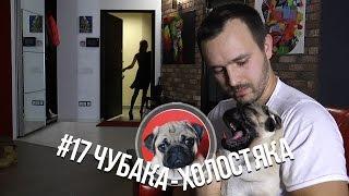 #17 Чубака-холостяка / Мопс vs Личная жизнь / Love vs Pug