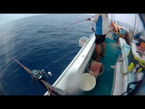 Hong Kong Offshore  Fishing - Bait cage day time 2 (3/10) ボート釣り