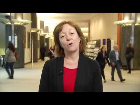 Jill Evans MEP, EU referendum, November 11th 2015