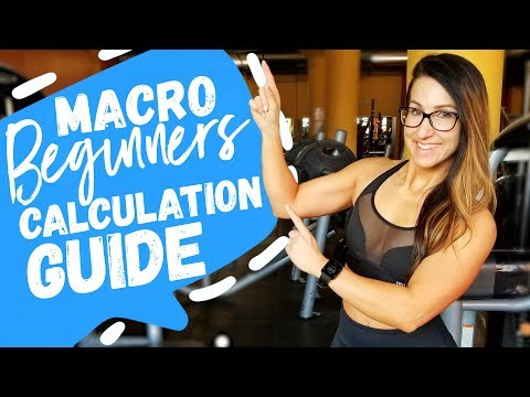 Macro Beginner's Calculation Guide Dietitian