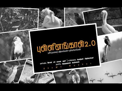 Pullinangal 2.0 Tamil lyrical video   Crazy2 studios   Rajapalayam   9095309300