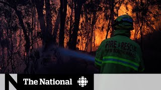 Australian bush fires have firefighters stretched