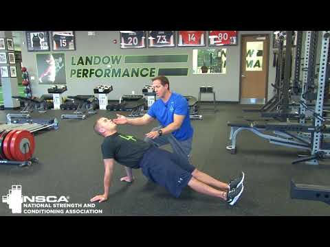 Bridge: Core Training Progressions, with Loren Landow | NSCA.com