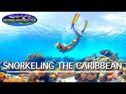 Best Caribbean Snorkeling