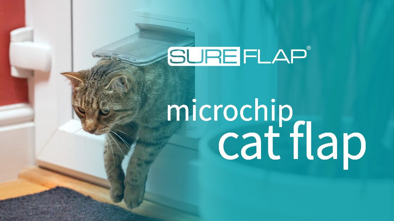 SureFlap Microchip Cat Flap & DualScan Door Installation