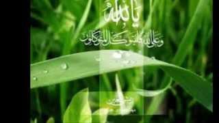 Download Hindi Video Songs - Allah hoo allah ho (Instrumental) A tribute to Qari Waheed Zafar Qasmi