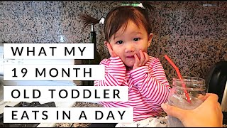 WHAT MY 19 MONTH OLD TODDLER EATS IN A DAY | FOOD DIARY