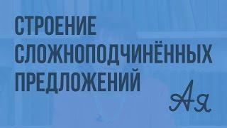 Подчинительные союзы и союзные слова в сложноподчиненных предложениях. Видеоурок по русскому языку 9