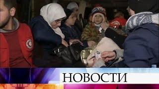 Из пригорода Дамаска Восточная Гута удалось вывезти 13 мирных жителей.