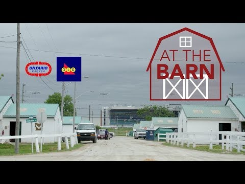 Talkin' Horse Racing  - Episode 7 - At The Barn - Chelsea