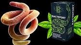 bactefort mellékhatásai