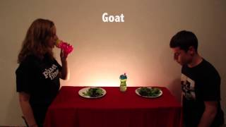 How Animals Eat Their Food