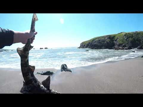 BODEGA BAY, CA: Fishing And Crabbing