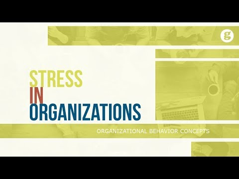 Stress in Organizations