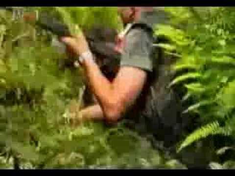 Vojno redarstvena operacija Oluja
