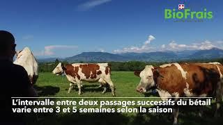 Les fruitières des Bornes - Partie 1 | BioFrais, Partenaire de l'Agriculture Locale