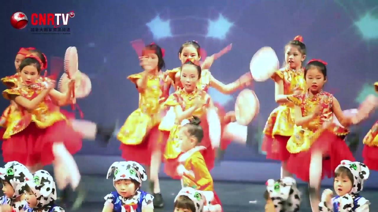 多伦多社区与文化中心 金牛新春联欢晚会  TCCC 2021 Chine New Year GALA