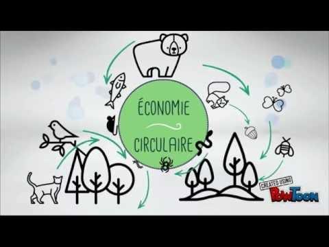 Mode écologique: les principes de l'économie circulaire - tome 1
