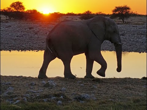 Namibia McD17